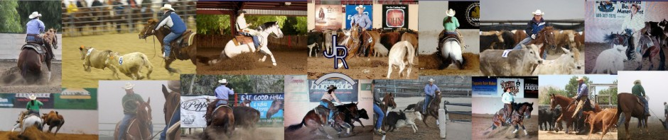 JR Productions and Performance Horses
